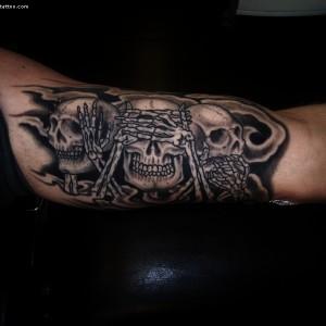 Skulls,Dödskallar